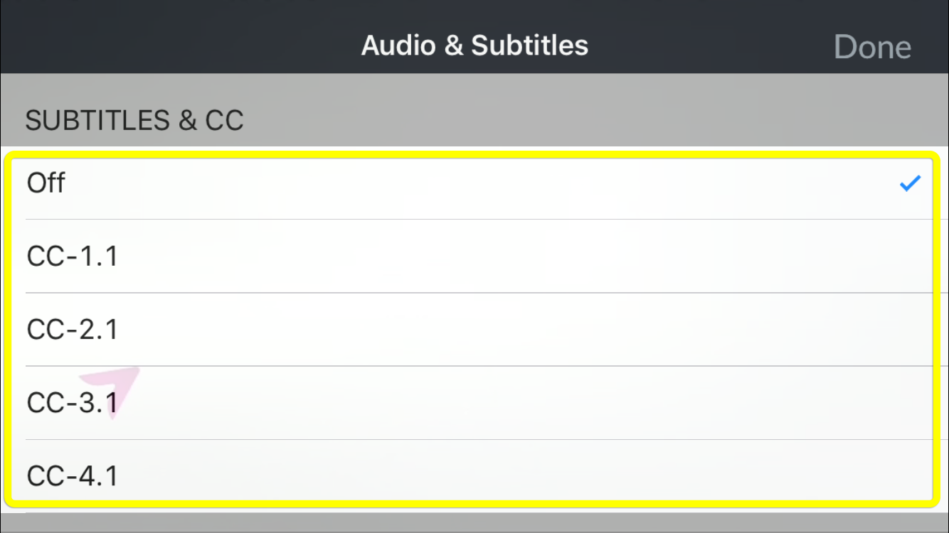 available subtitle and closed caption options in the DISH Anywhere phone app