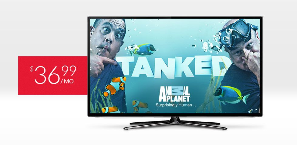 $36.99/mo | Catch Tanked on Animal Planet, included in Smart Pack