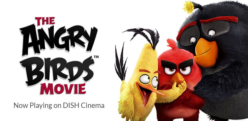 Angry Birds, Now Playing on DISH Cinema