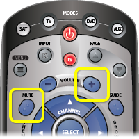 Mute and volume buttons on a 21 Remote