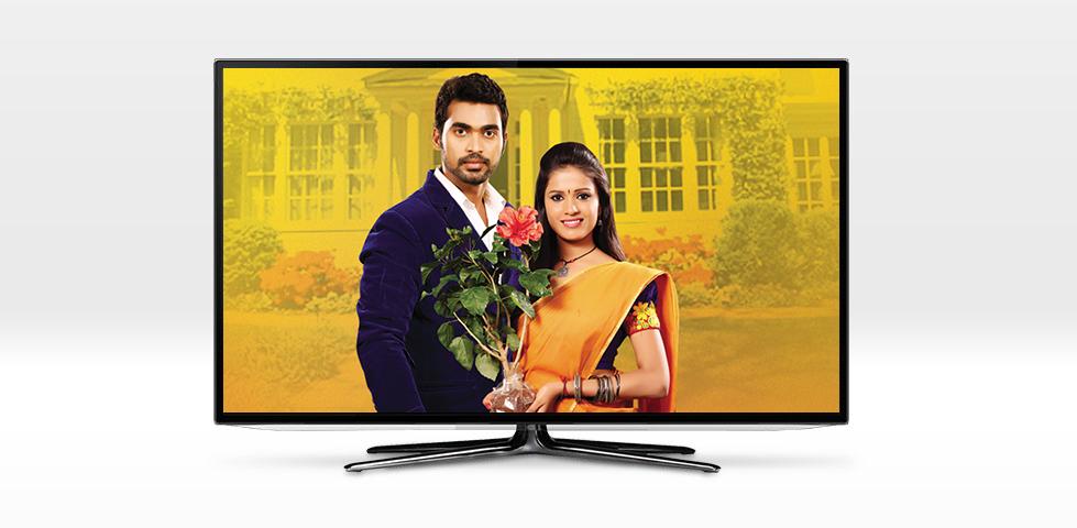Telugu Packages | International Channels on DISH | MyDISH