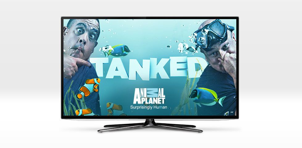 Tanked, on Animal Planet