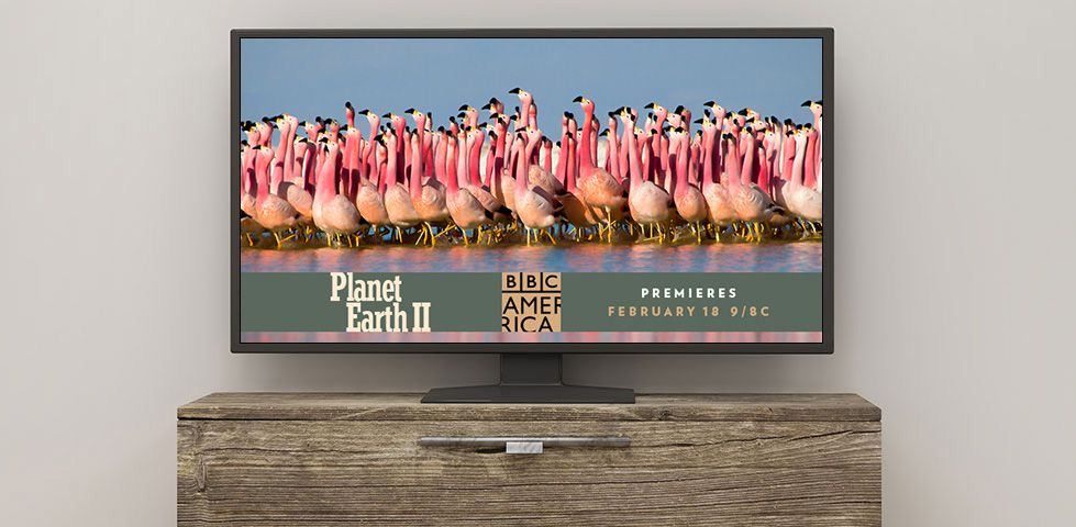 Planet Earth 2 on BBC America, channel 135