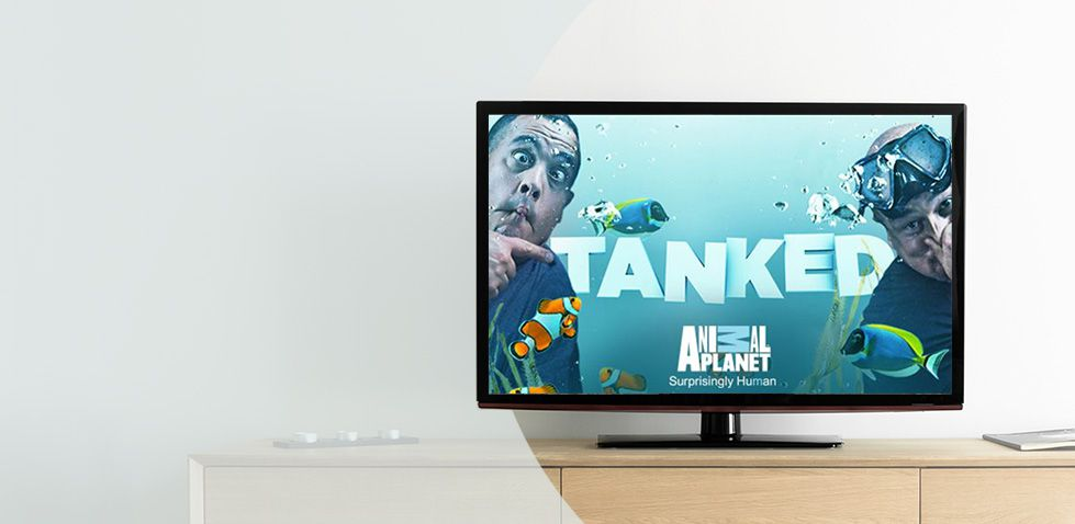 Catch Tanked on Animal Planet, included in Smart Pack