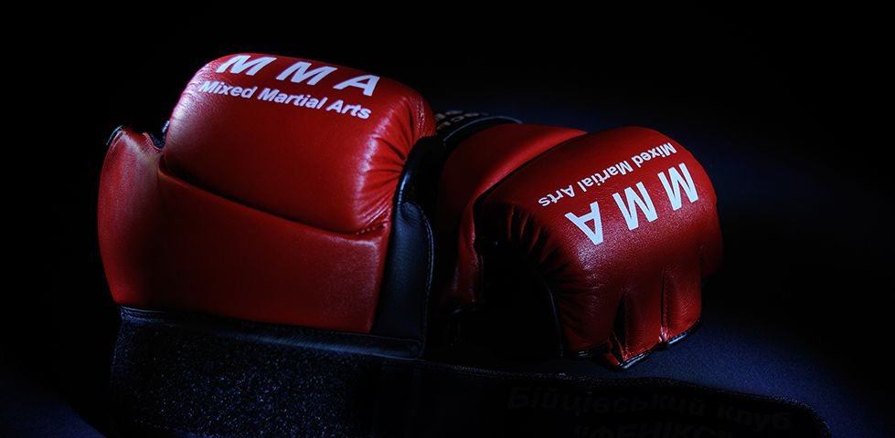 Mixed Martial Arts gloves