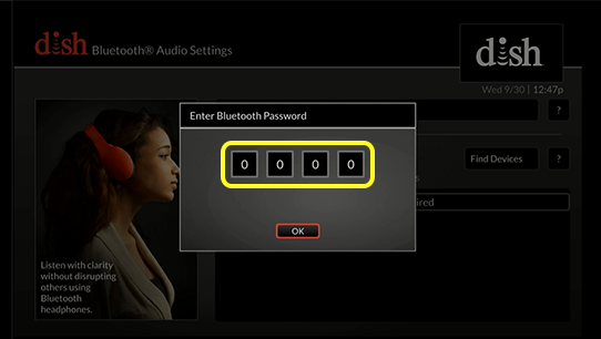 Bluetooth password entry