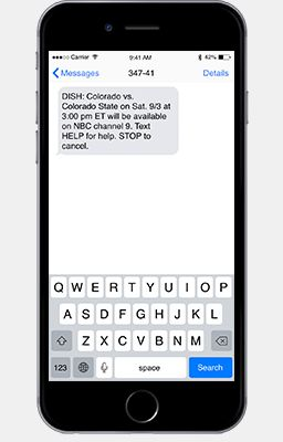 Text message alerts on a cell phone