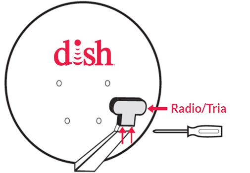 the Radio/Tria is attached to the end of the arm sticking out from the satellite dish