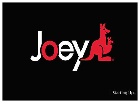 Joey loading screen